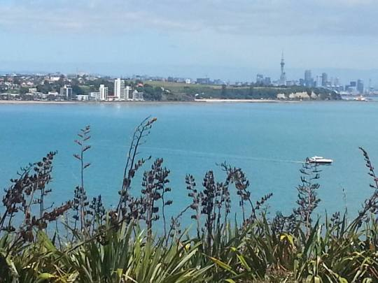 auckland2bview2bfrom2bst2bhiliers2bachilles2bpoint